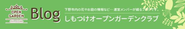 blog_ban